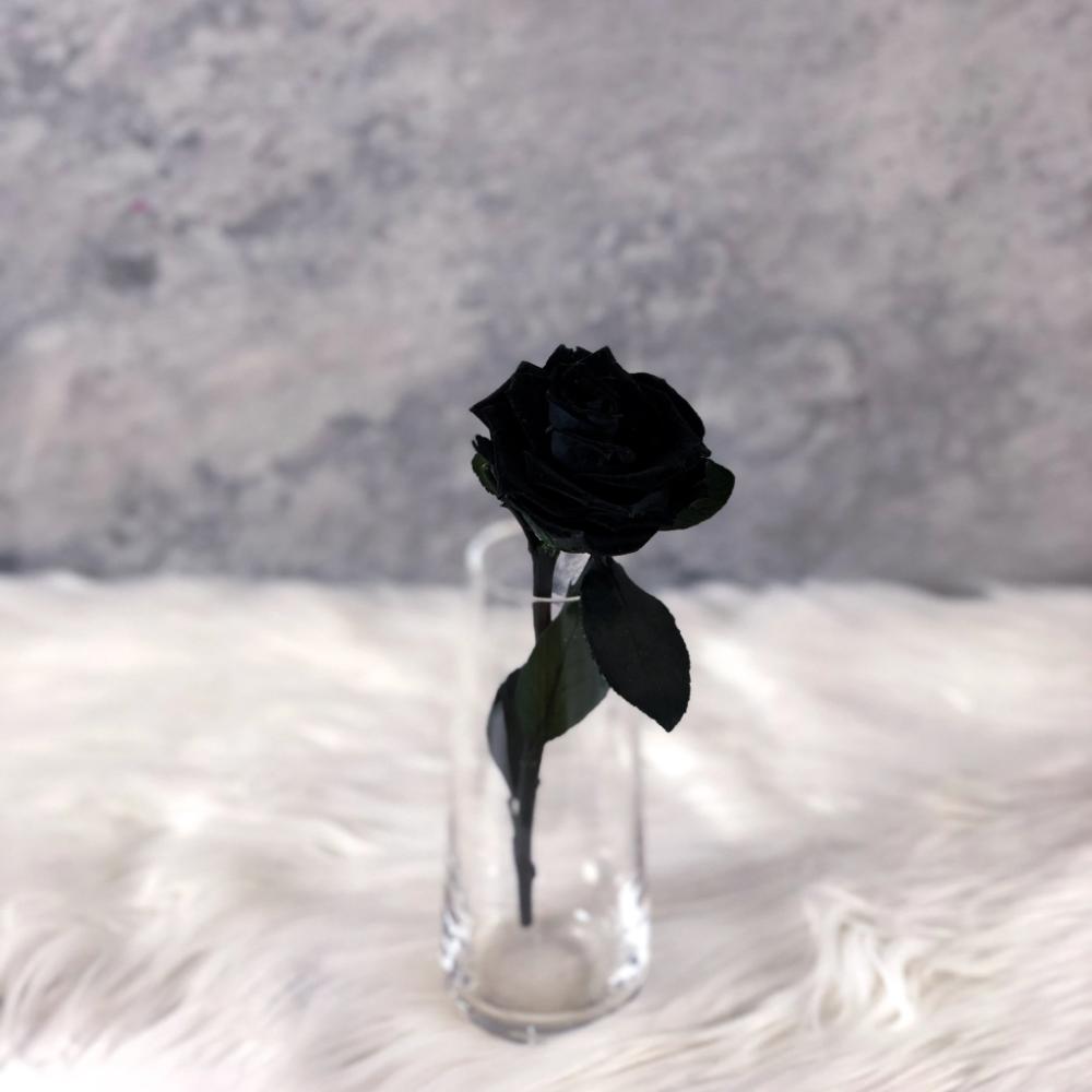 Single Long Stem Black Rose Solitaire In Black In 2020 Black Rose Forever Rose Rose