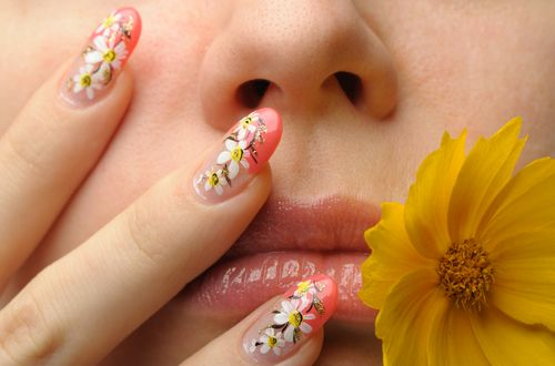 We're Wild About Nails - a look at the Growing Nail Craze