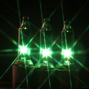 50 Green Mini Lights on Black Wire | Green christmas lights, Light ...