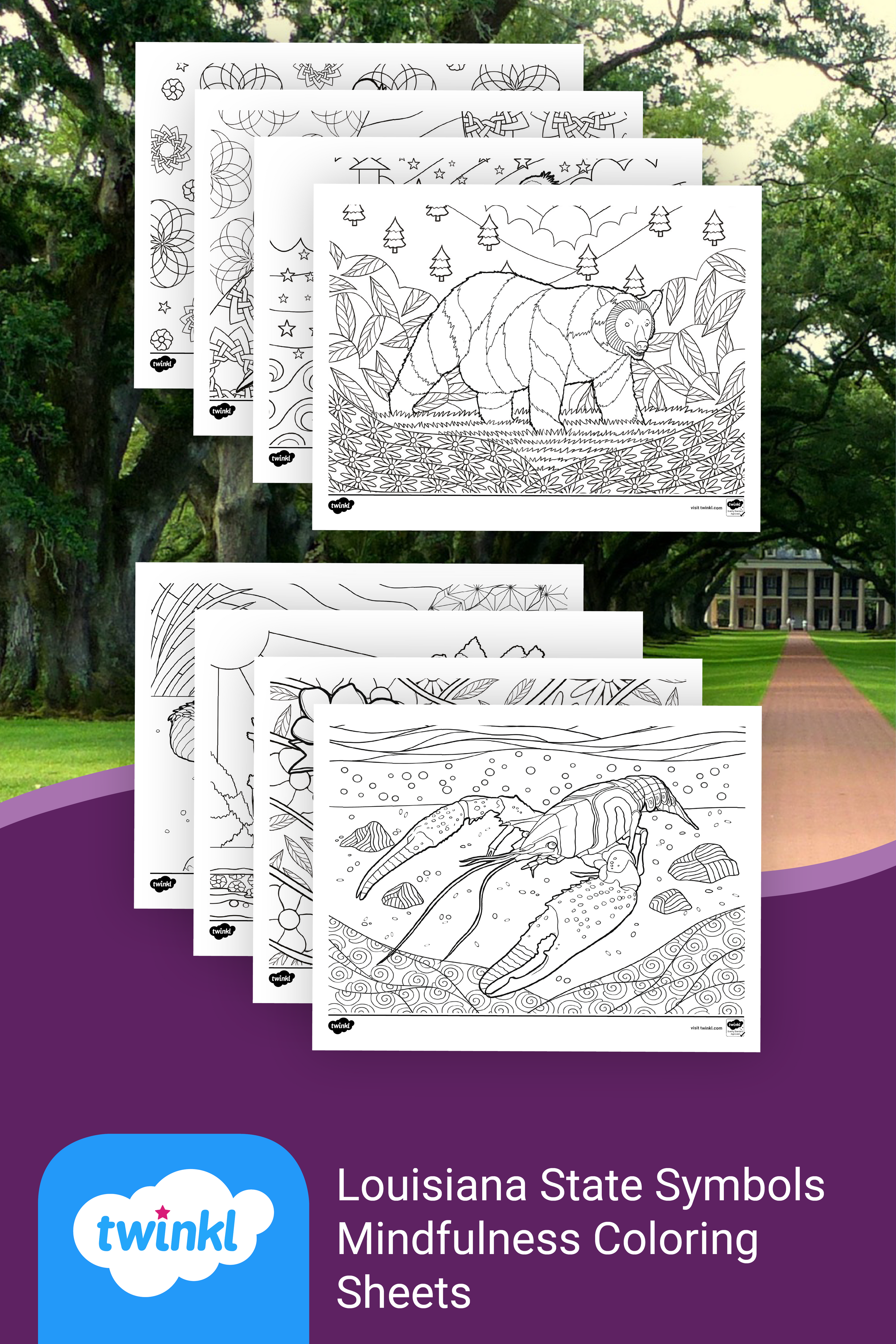 Introduce Students To The State Symbols Of Louisiana The