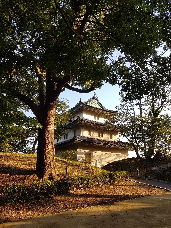 List of Pinterest yagura images & yagura pictures
