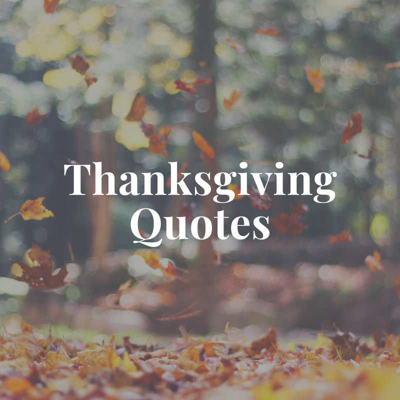 Goodness Gracious 150 Thanksgiving Quotes That Will Make You Feel Goodness Gracious 150 Thanksgiving Quotes That Will Make You Feel