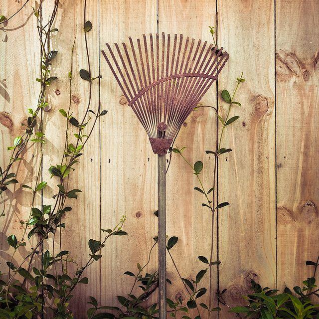 Vintage Garden by ►CubaGallery, via Flickr