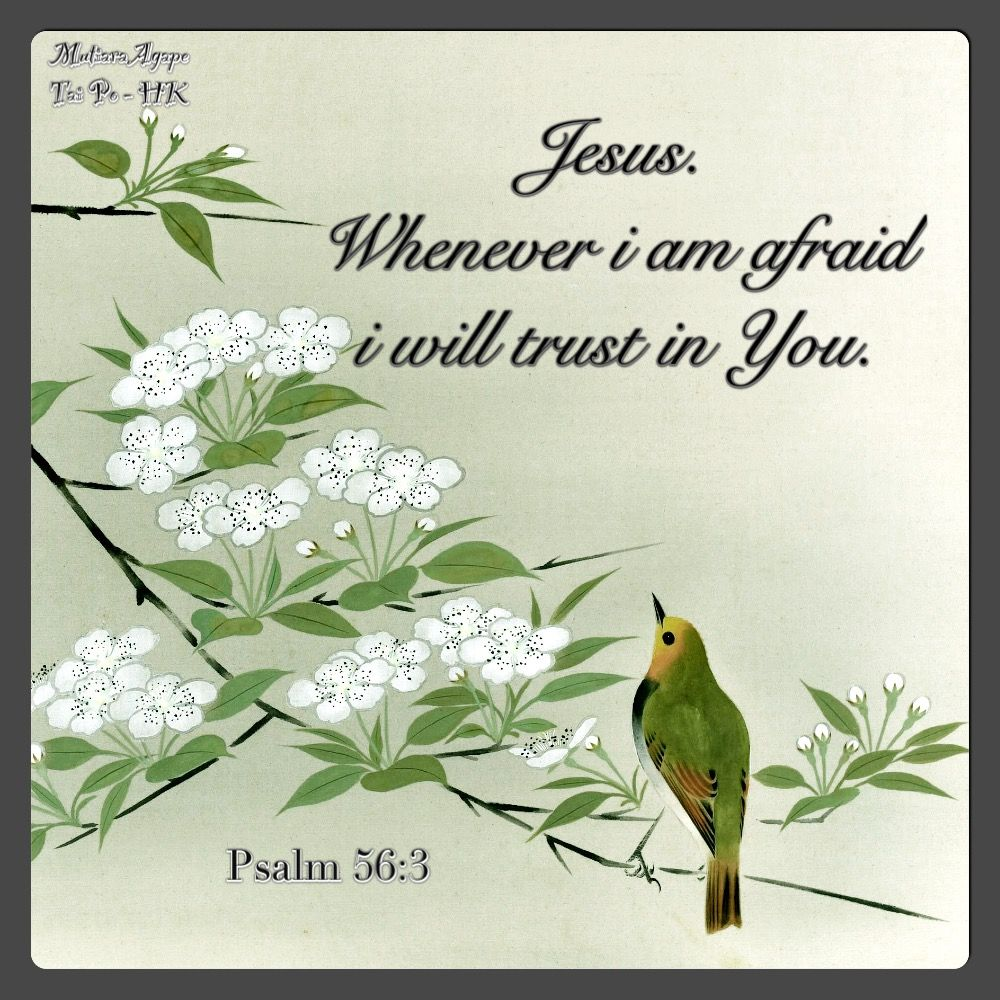 Pin by Agape Quotes on Agape quotes | Scripture quotes