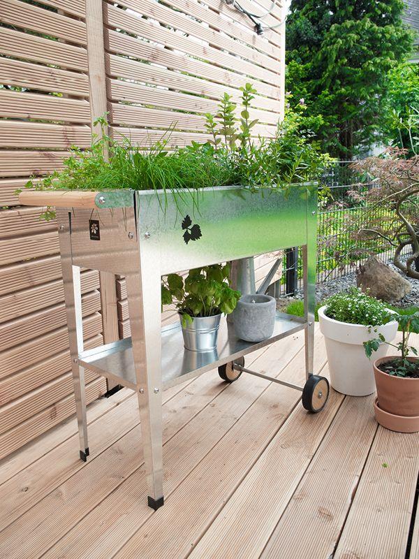kr uter hochbeet im pflanz trolley via sodapop design garten terrasse pinterest garten. Black Bedroom Furniture Sets. Home Design Ideas