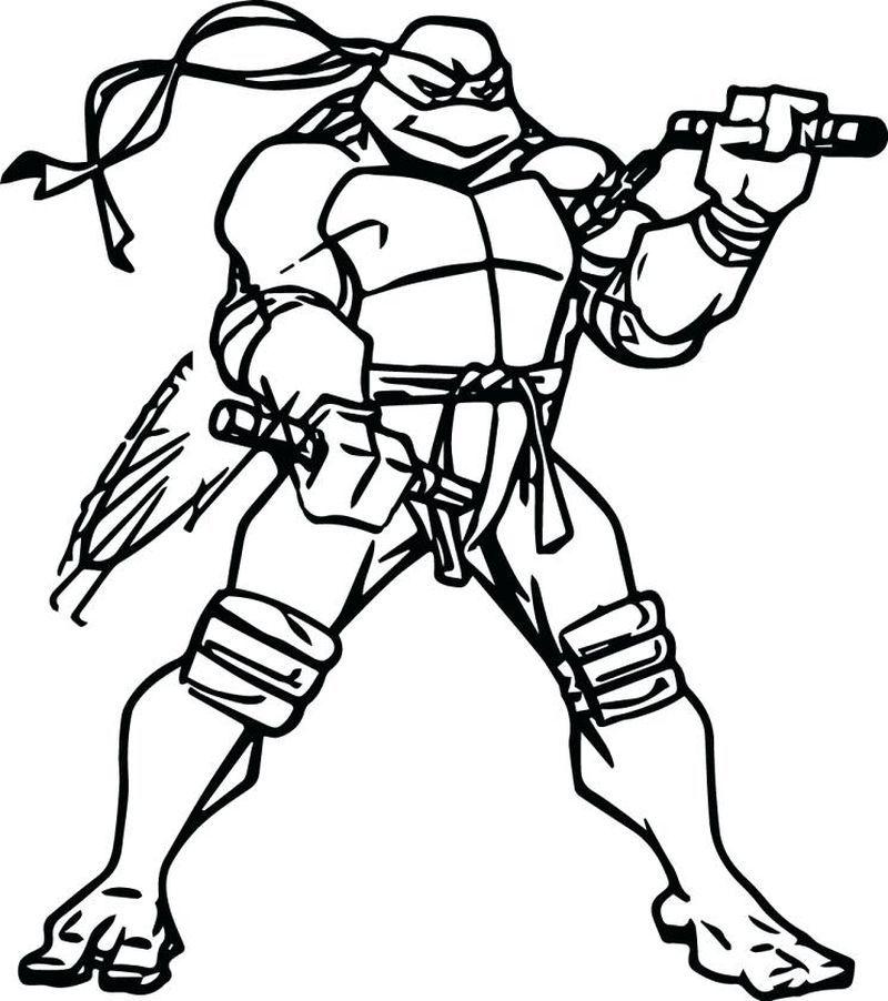 Ninja Turtle Coloring Page Pdf In 2020 Ninja Turtle Coloring Pages Turtle Coloring Pages Cartoon Coloring Pages