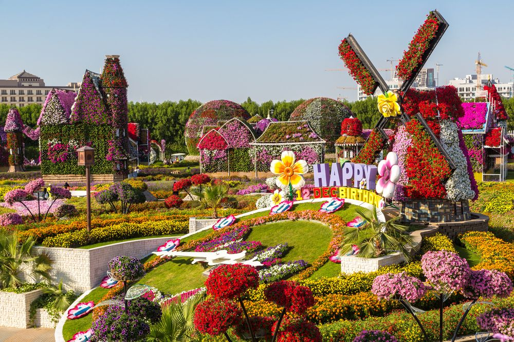Dubai in 2 Days Miracle garden, Dubai garden, Botanical