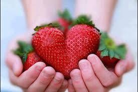 Risultati immagini per immagini di frutti rossi