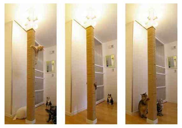 Floor To Ceiling Cat Sisal Scratching Pole Diy Cat Pillar Cat