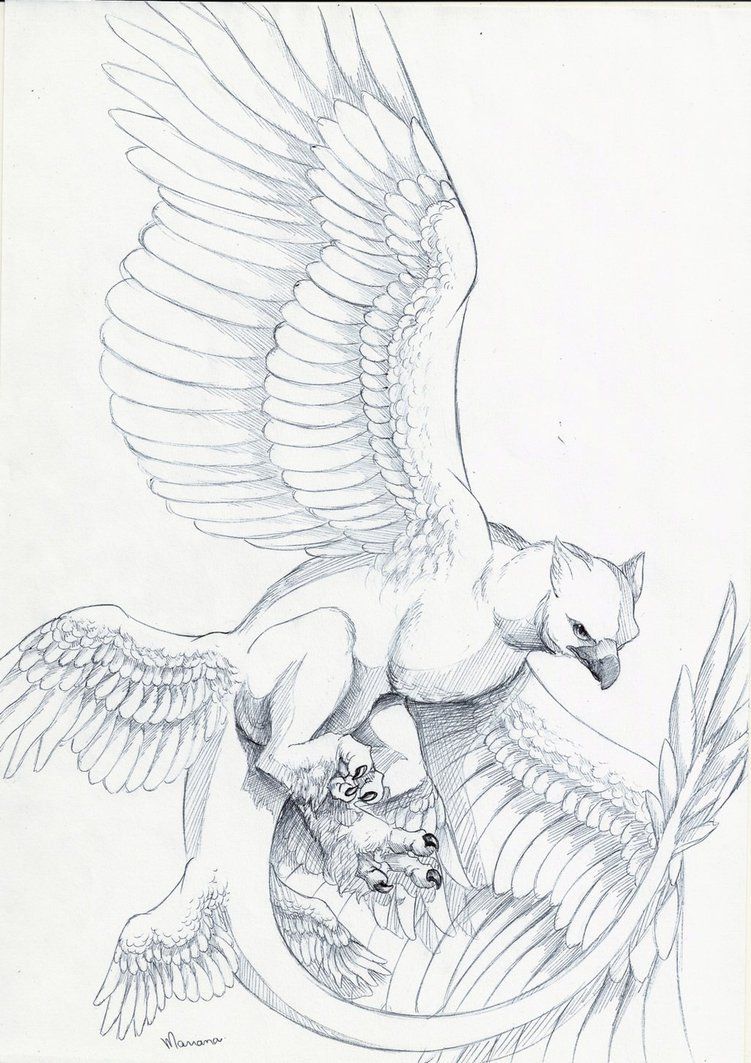 Frank The Thunderbird By Mariana C 2016 With Images Mythical