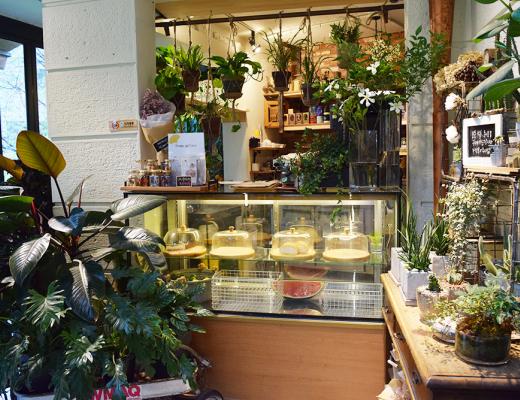 Avril Phua   Travel - Korea, Hongdae, Blute Flower Cafe