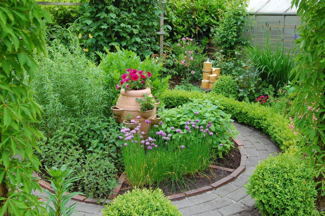 kr utergarten bilder und fotos ideas for garden 3 pinterest kr utergarten garten und kraut. Black Bedroom Furniture Sets. Home Design Ideas