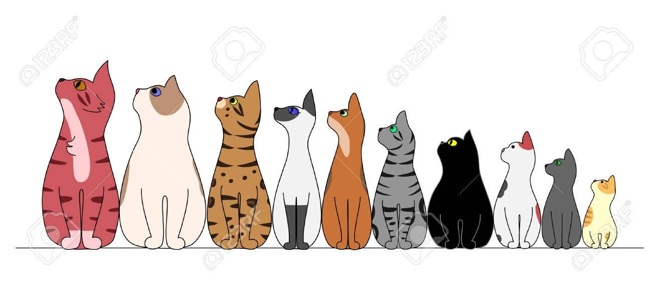 Cats In A Row Looking Away Ad Cats Row Cat Clipart Cat Illustration Cat Drawing