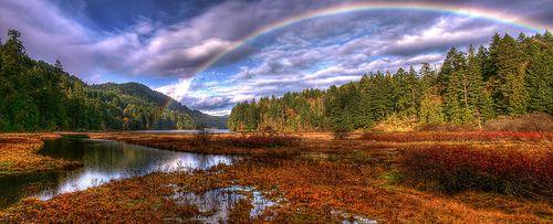 Rainbow, Goldstream Park outside of Victoria, B.C.