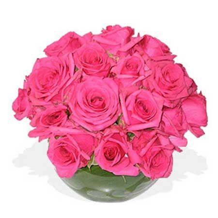 Flores Rosas: Nomes, Tipos, Espécies, Fotos, Decoração