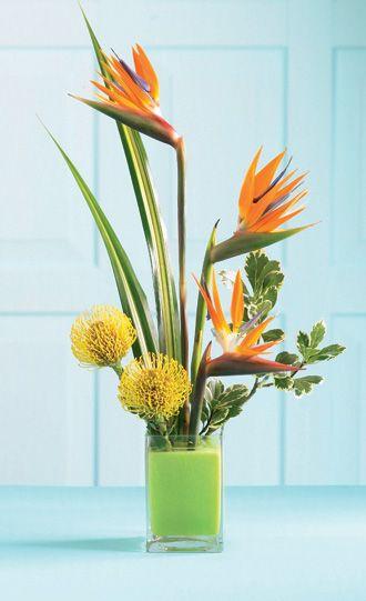 Tropical Bright Arrangement   - Best Selling Flowers