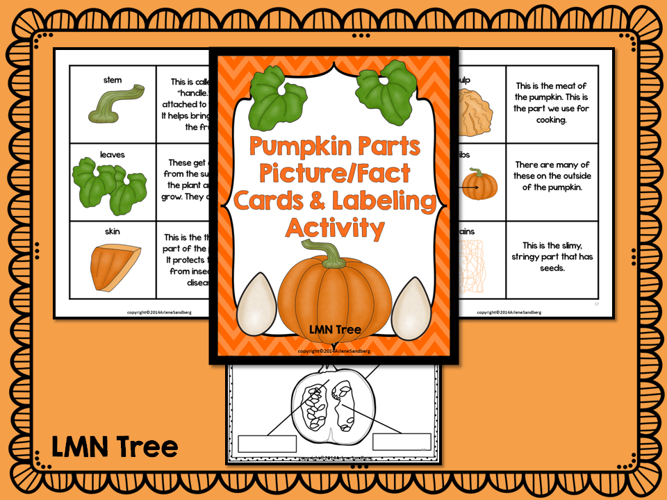 classroom freebies: pumpkin parts picture/fact cards and labeling activity