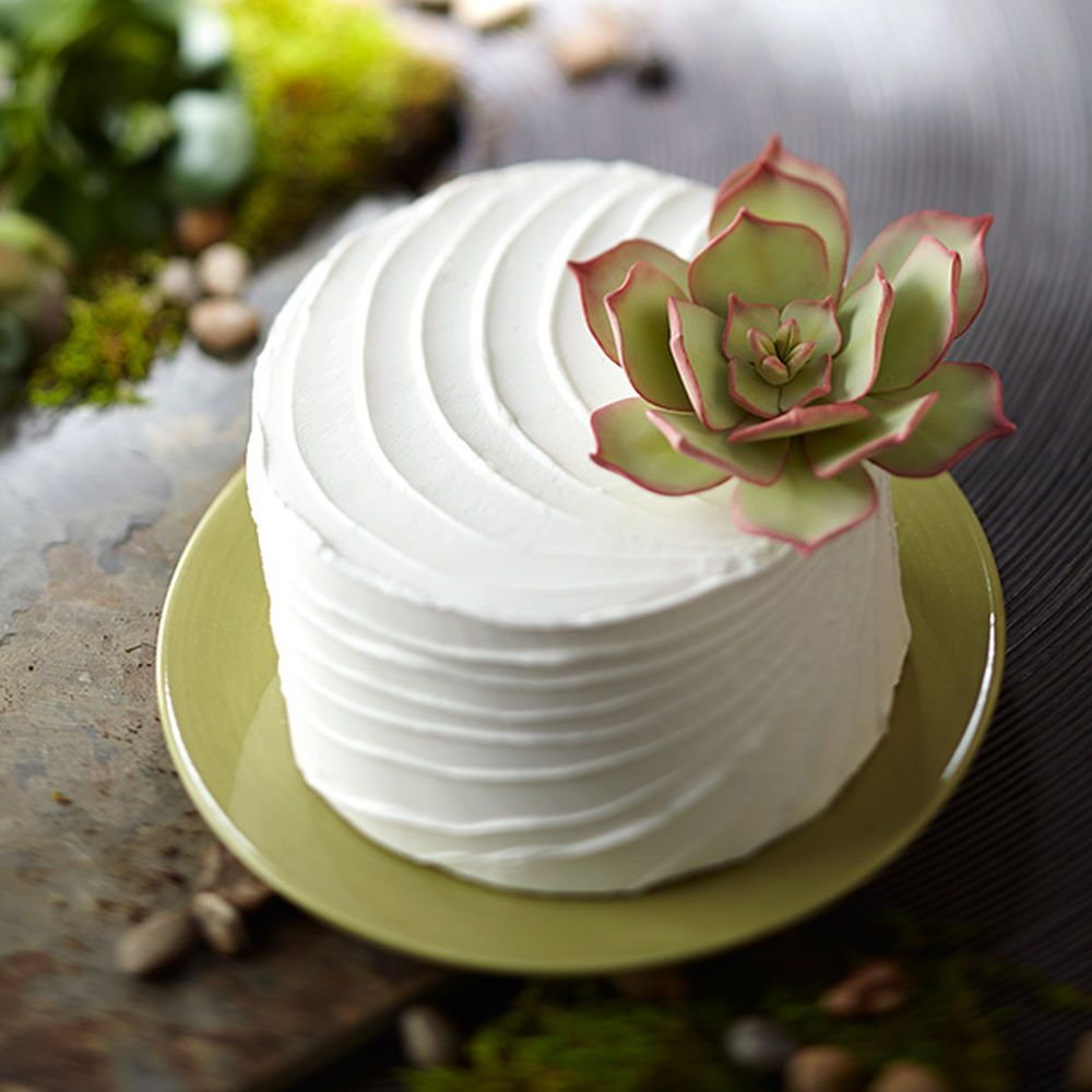 A fondant succulent plant adds a fresh, natural touch on this buttercream-iced cake. Use the Wilton Gum Paste Flower Cutter Set to create this hardy-looking plant.