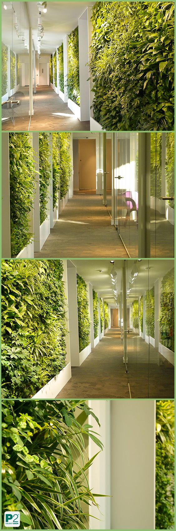 Verzauberkunst Wandgarten Innen Ideen Von Pflänzlein, Pflänzlein An Der Wand #wandgarten #vertikalebegrünung