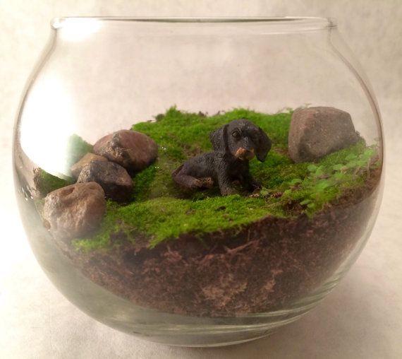Live Moss Terrarium Animal Fairy Garden With By Kellyanntiques