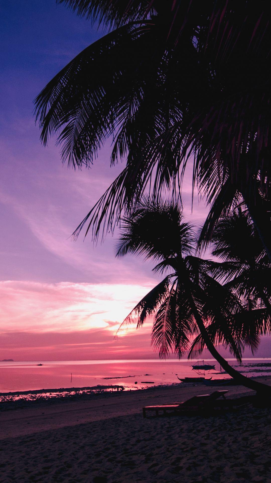 Palm Trees Beach Nature Sunset Wallpaper Sunset Wallpaper