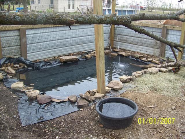 Duck pond ideas ducks pinterest for Duck pond filtration