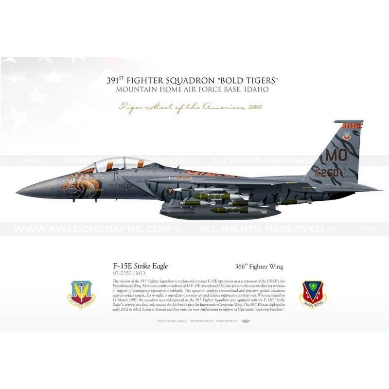 F 15e Strike Eagle 391fs Bold Tigers Usaf Yc 07 Aviationgraphic Fighter Usaf Fighter Jets