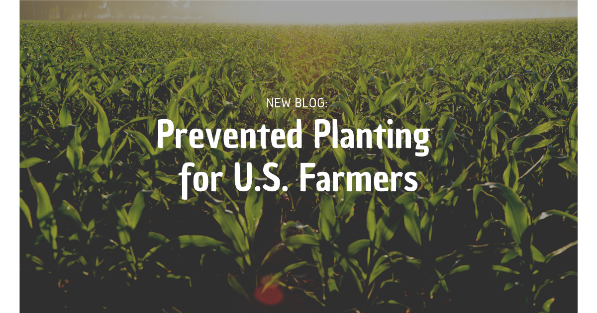 Prevented Planting for U.S. Farmers in 2020 Plants