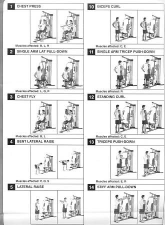 weider home gym exercise chart download