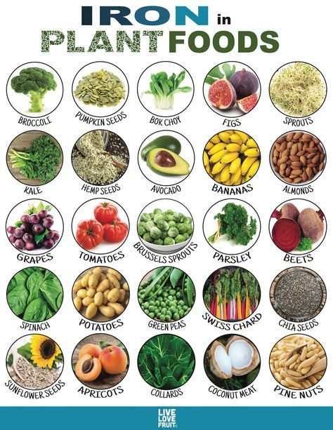 anemic on whole food plant based diet