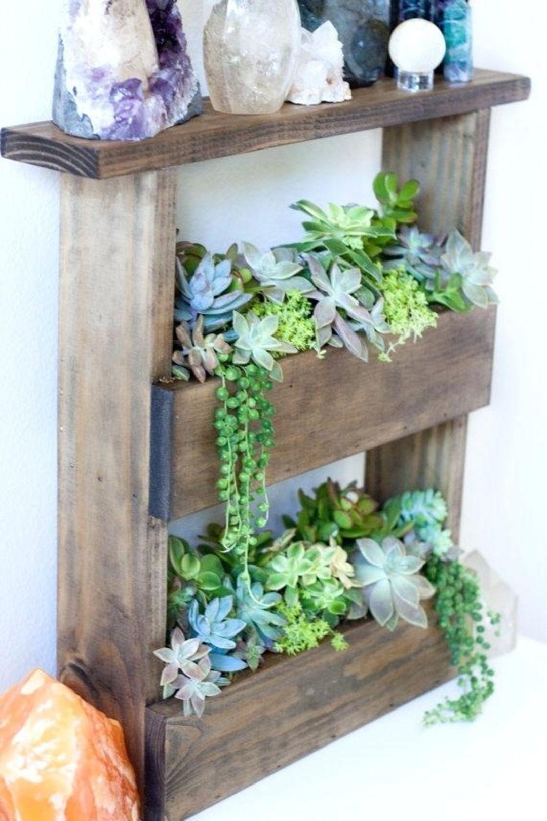 15 enchanting diy plants shelf ideas for home decoration