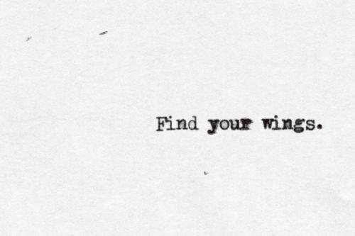 Source: butterfliesarefree3149