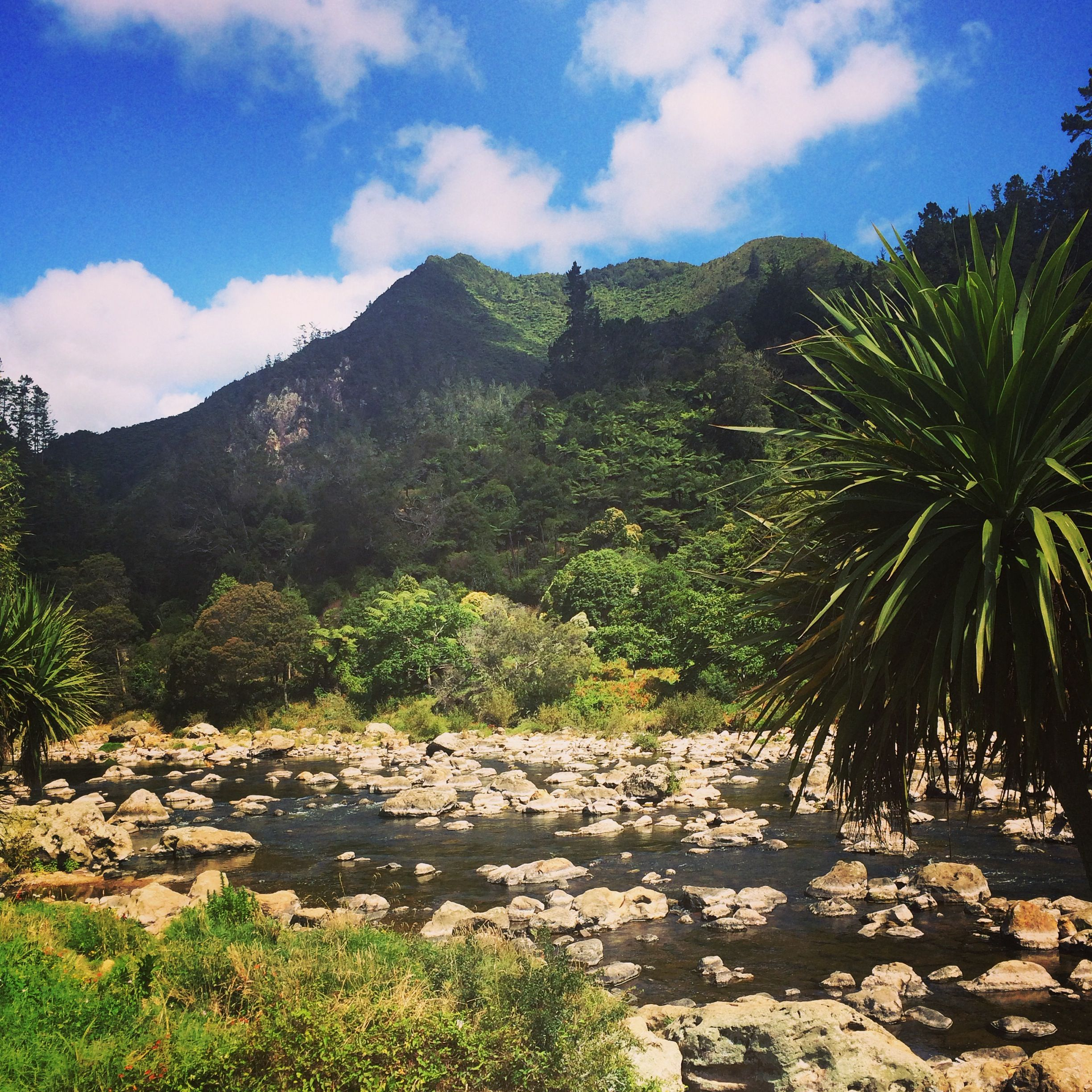 New Zealand is grand on a scale you can only appreciate in person. A wild wilderness. Kia Ora Tours.