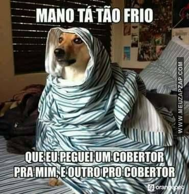 23 Imagens Engracadas De Frio Para Whatsapp E Facebook Memes Humor Funny Memes