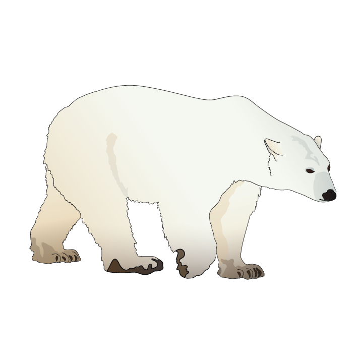It S International Polarbearday The Symbol Of The Week Is You Guessed It The Polar Bear C Polar Bear Illustration Polar Bear Drawing Bear Illustration