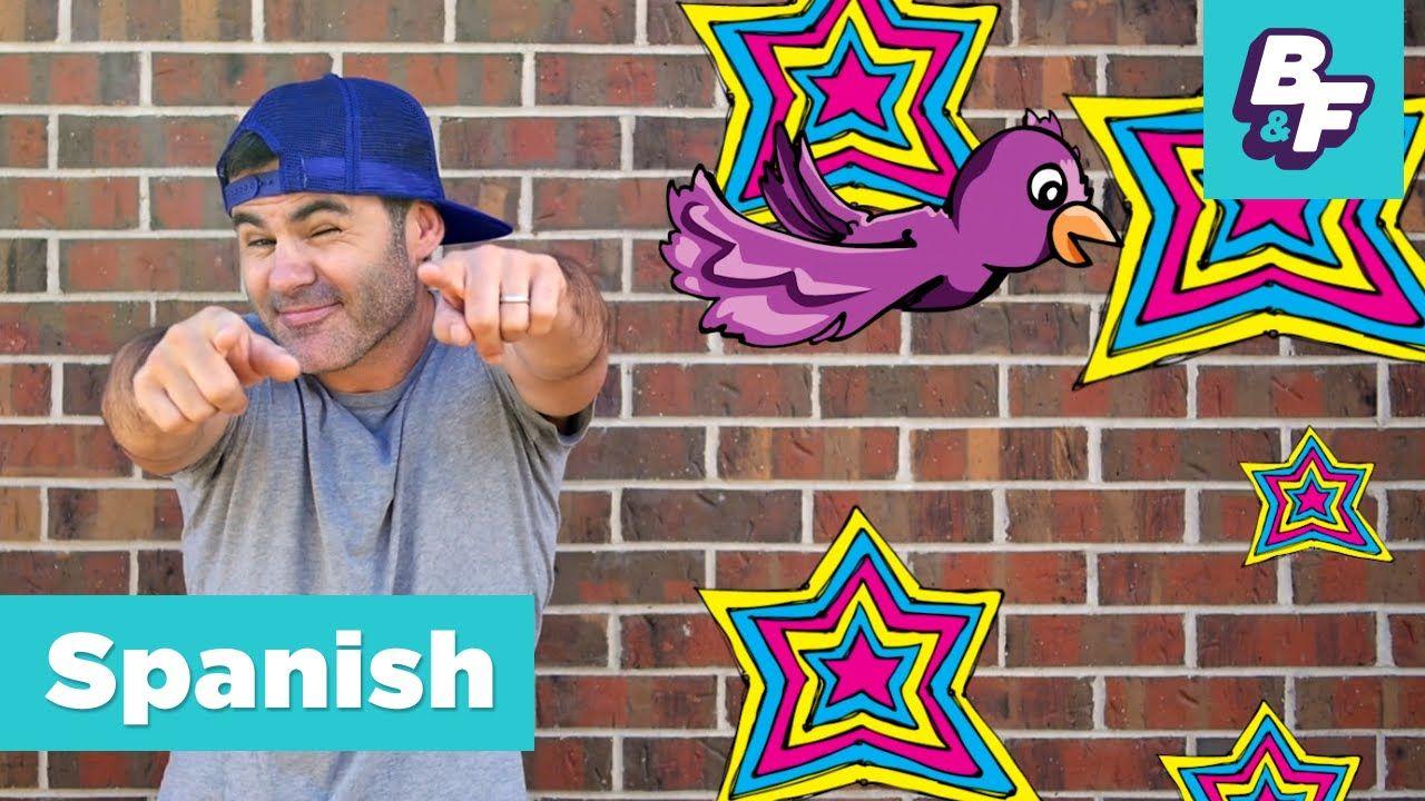 BASHO & FRIENDS ¿Qué quieres? Learn Spanish courtesy