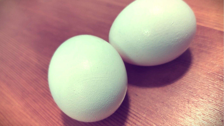 1000 Times Egg Pancake Challenge | Please Share