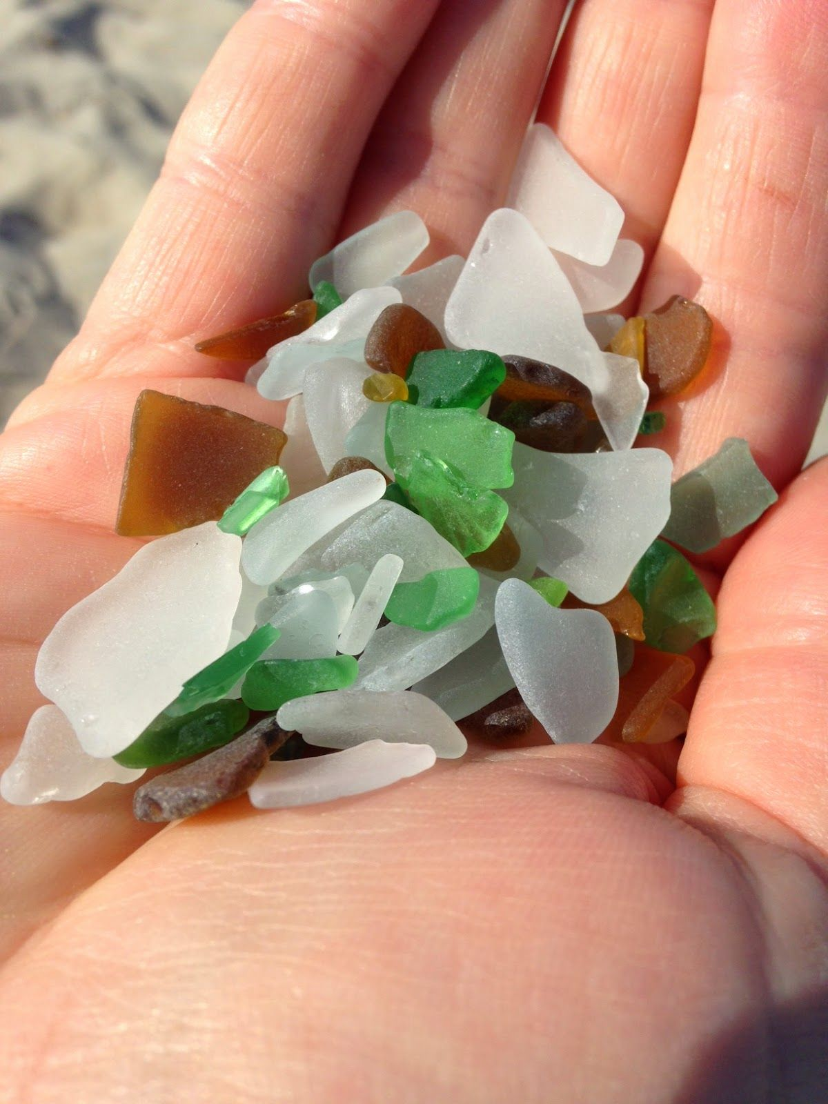 Seaglass from the Baltic Sea
