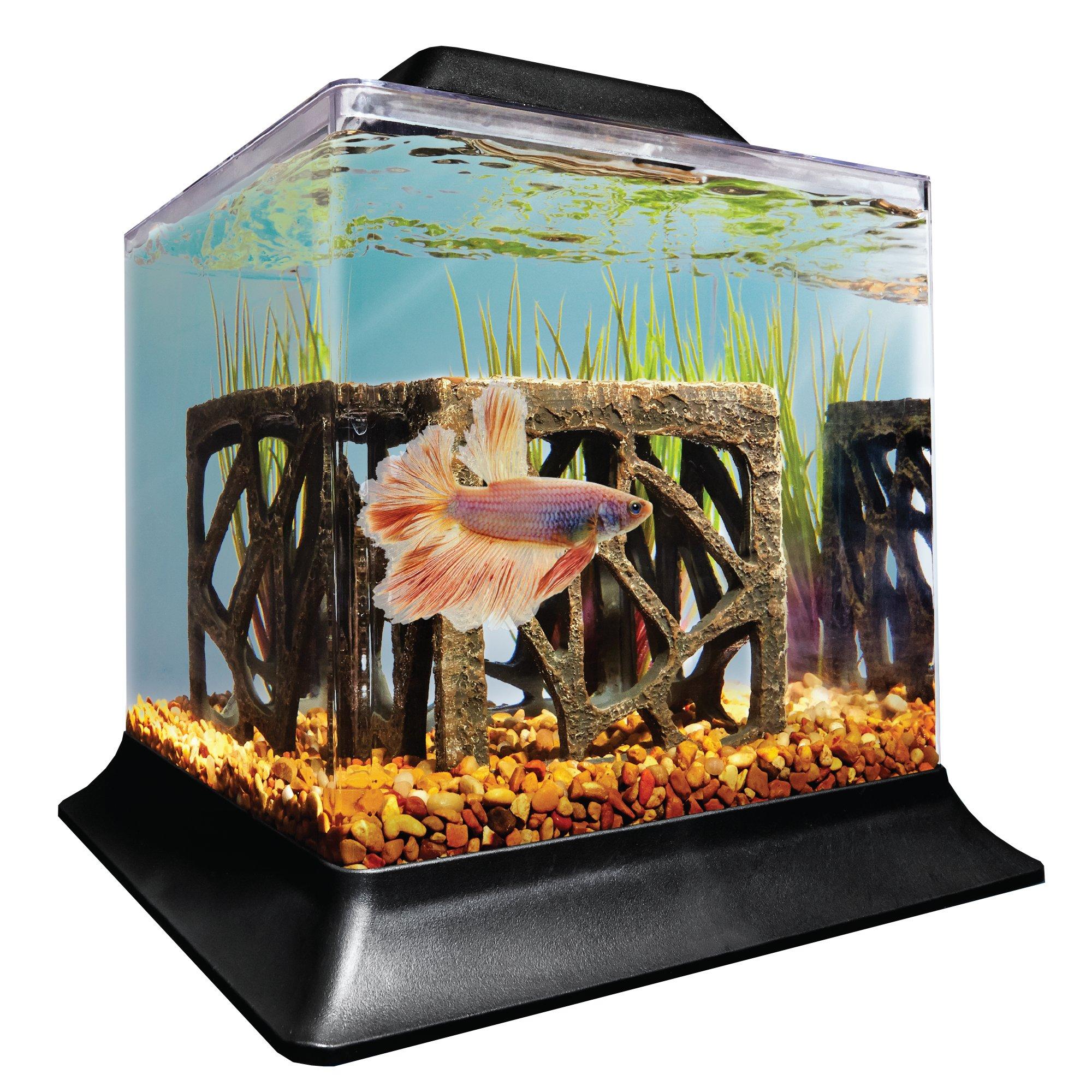 Imagitarium 1 4 Gallon Betta Aquarium Petco Betta Aquarium Betta Aquariums For Sale