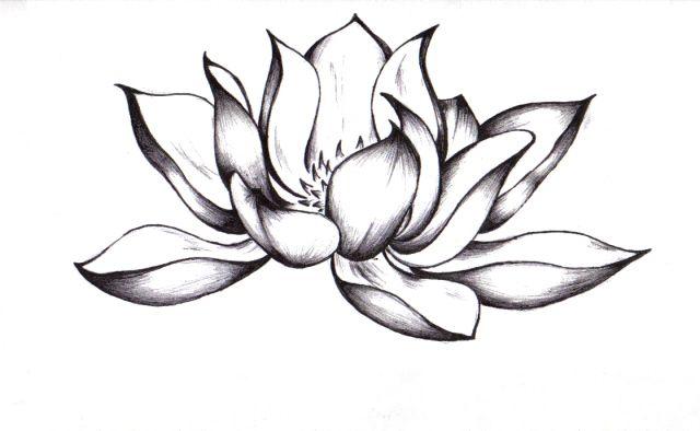 Black Lotus Tattoo Amazing Lotus Flower Tattoo Pictures Amazing Lotus Flower Tattoo Lotus Flower Tattoo Design Black Lotus Tattoo Picture Tattoos