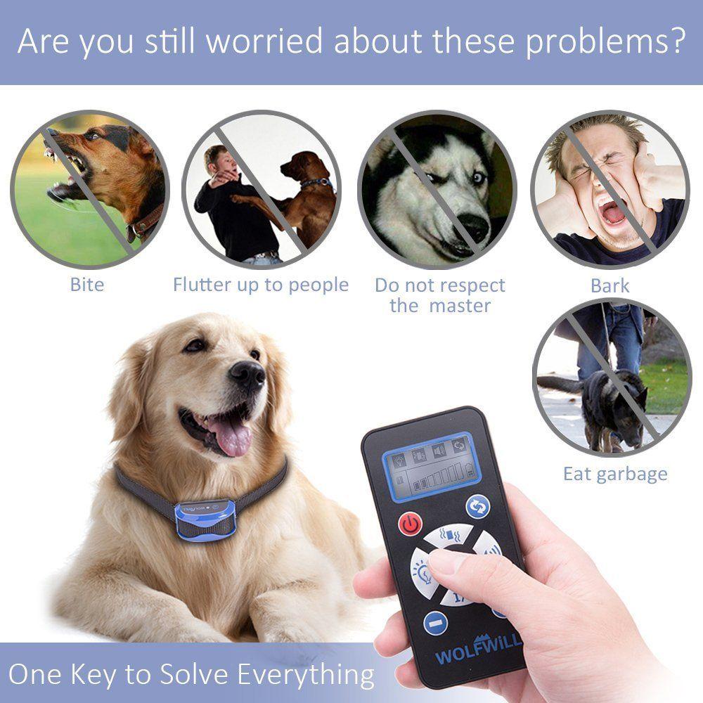 Amazon Com Wolfwill 800 Yards Remote Dog Training Collar