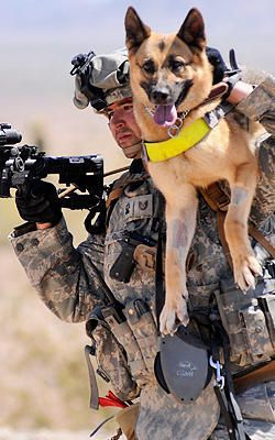 Soldier Dogs: The Four-Legged Heroes Of Iraq And Afghanistan Air Force Technical Sergeant Adam Miller carries his dog, Tina M111, to Dogs: The Four-Legged Heroes Of Iraq And Afghanistan Air Force Technical Sergeant Adam Miller carries his dog, Tina M111, to