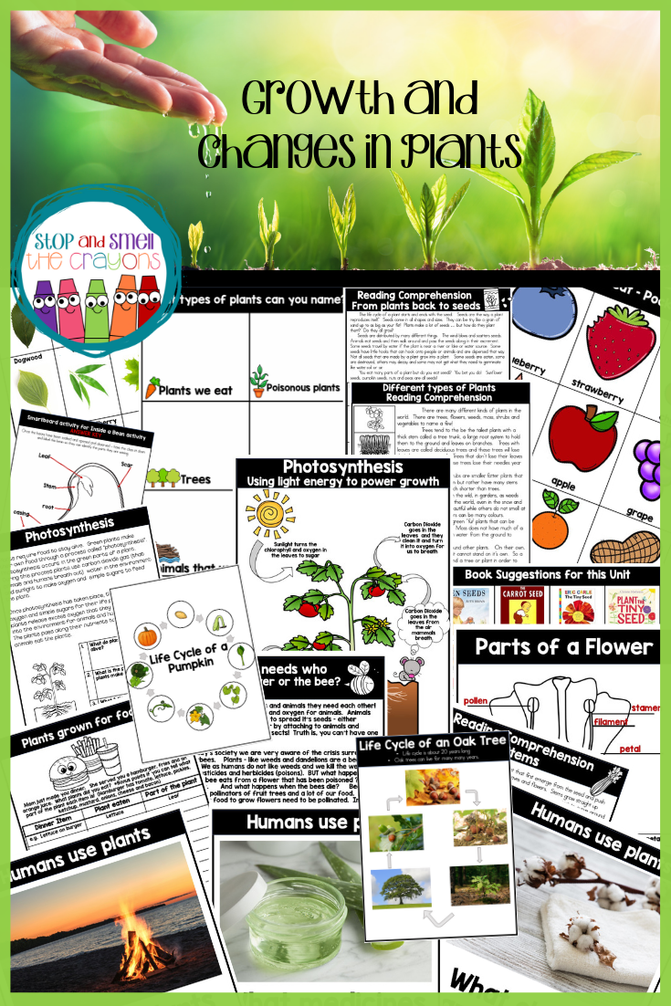 Do You Teach Third Grade Science And Need A Complete No Prep Easy To Use Unit Complete With Grade 3 Science Plant Growth Activities Science Teaching Resources [ 1102 x 735 Pixel ]