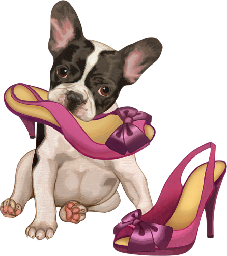 French Bulldog Puppy and moms high heels, illustration.