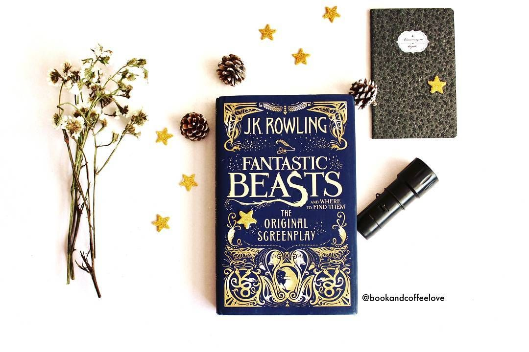 Please Take Me To Magical World Of Hogwarts Did You Guys Know That There Are New Editions Of H Jk Rowling Fantastic Beasts Harry Potter Books Hogwarts