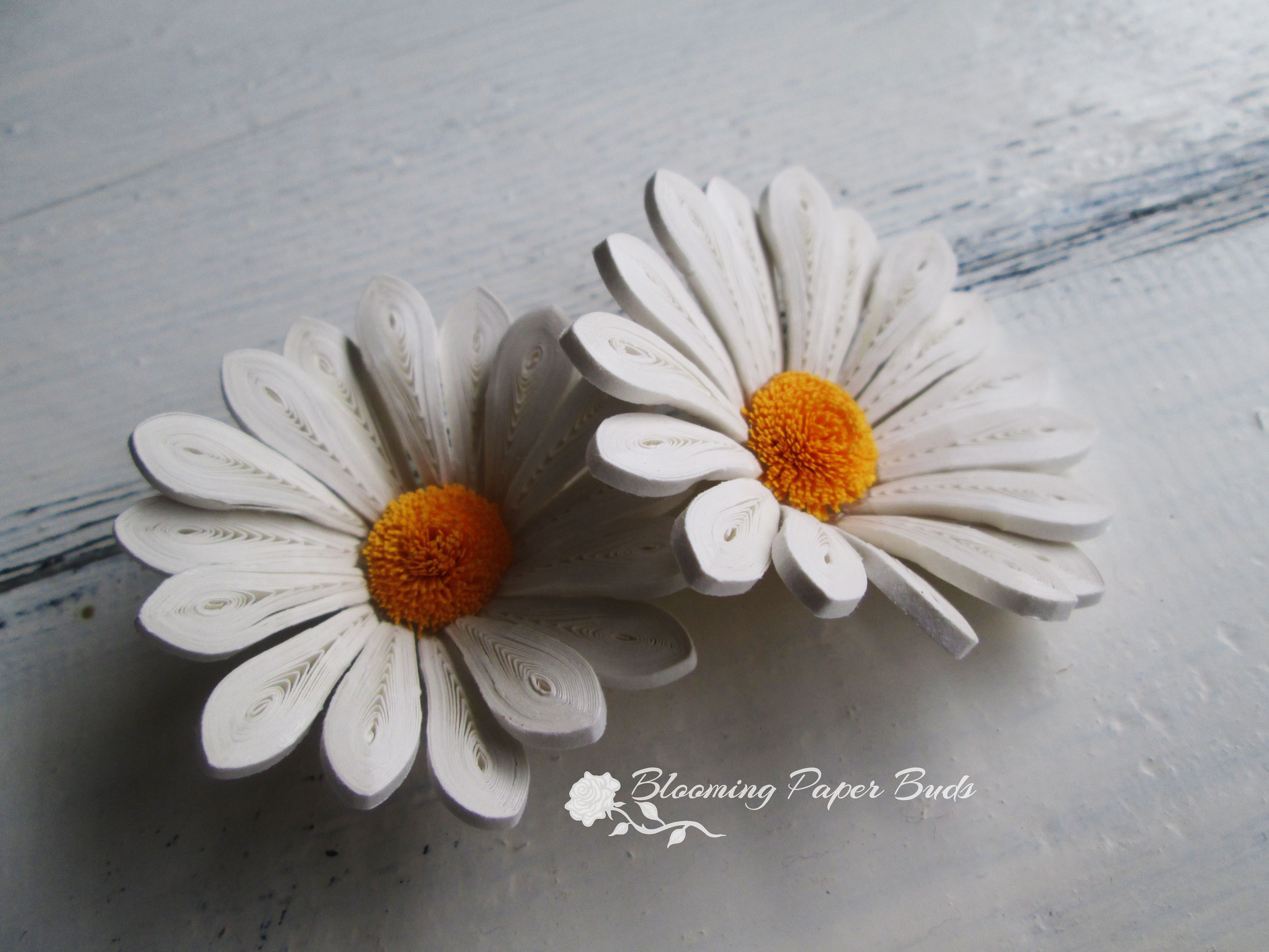 Quilled daisy flower quilling flowers quilling pinterest quilling
