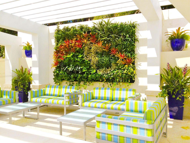 Big Color Vertical Garden   St andrews, Living walls and Gardens