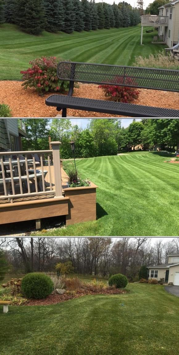 From Professional Lawn Service To Clean Out Work Grounds Pro Is The Company Call They Handle Garbage Pick Up Weeding And Landscaping Jobs