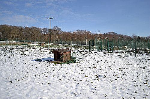 Projekt grün: Tierschutzverein Neuwied und Umgebung e.V.