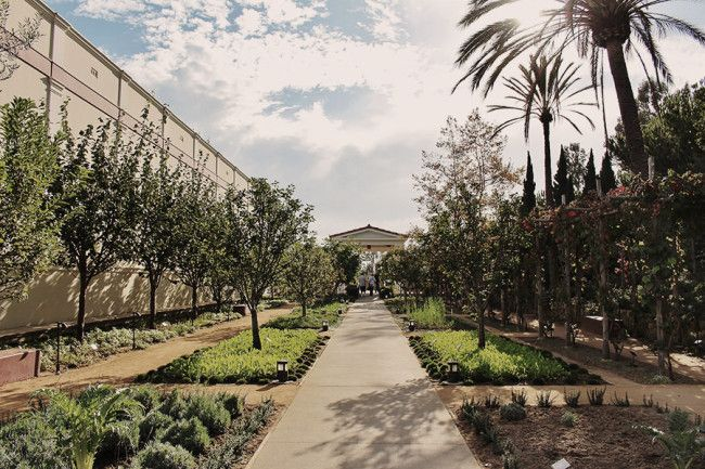 California sunshine at the stunning Getty Villa | Gather's Guide to Coastal LA
